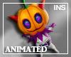 *In* Mummy Pumpkin