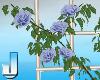 Fleuriste RoseFence Blue