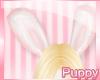 [Pup] Pink Bunny Ears