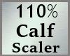 110% Calves Scale MA