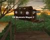 CD Moments Wagon 3
