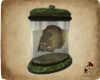 DeCarta SR Skull Jar