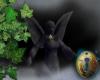 .-| Secret Garden Angel