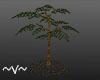 ~V~ Small Tree