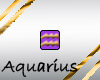 }T{zodiac bling Aquarius
