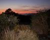 Sunrise At Torbay