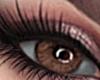 MS Brown Eyes