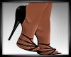 Zuri Shoes