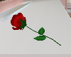 rose red  single