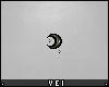 v. Little Moon (D)