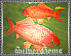 :SG:CHERRIES POND FISHES