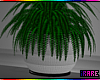 i CLAIRE POTTED FERN