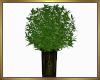 Potted Plant  V2