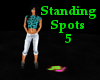 Standing Spots (5)