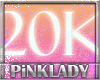 <P>Support 20K