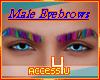 ! Rainbow Male Eyebrows