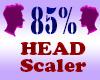 Resizer 85% Head