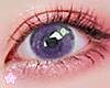🌟 Herb|Purple