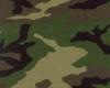Army cushion