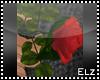 *E* Vibrant Rose