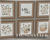 H. Fall Frames