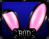 (BOD) Bunny Ears