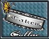 (BFD) Taken Spike Collar