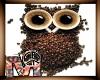 *M* The Owl