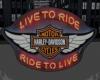Harley Neon Wings