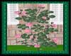 (WW)PINK ROSE BUSH