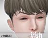 - Hairs - IriRequin Ash