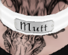white mutt collar