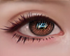 視線. Amber.
