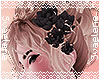 Hair Lilies |Black