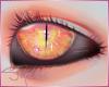 [SM]Fxuka2 EyeeUnisex