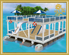 Slide & Dive Pontoon