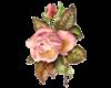Petite Pink Rose