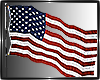 Animated Flag USA