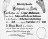 Cust HH Birth Cert