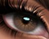Serena Eyes Light Brown