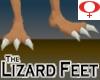 Lizard Feet -Womens v1b