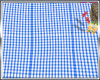 Blue Picnic Blanket