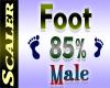 Foot Resizer 85%