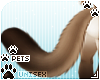 [Pets] Kimi | tail v1
