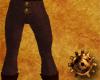 TimeGear Pants V2