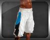 SP* Jordan B-Ball Shorts