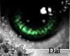 `Ⓓ`Doll Eyes 4