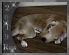 Rus: Sleeping dog 6