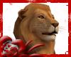 *D* Lion