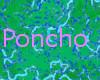 ponchoTide